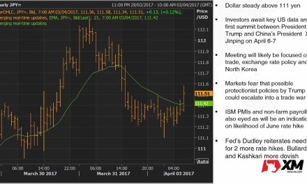 Forex News on 03/04/2017 Dollar steady ahead of NFP and Trump-Xi summit