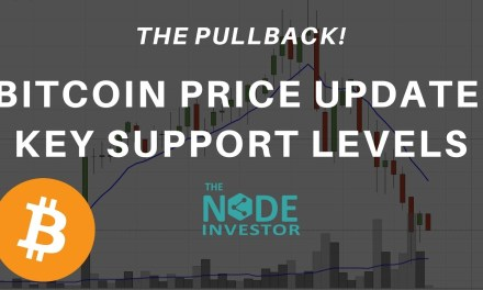 Bitcoin Support Levels to Watch In This Pull Back