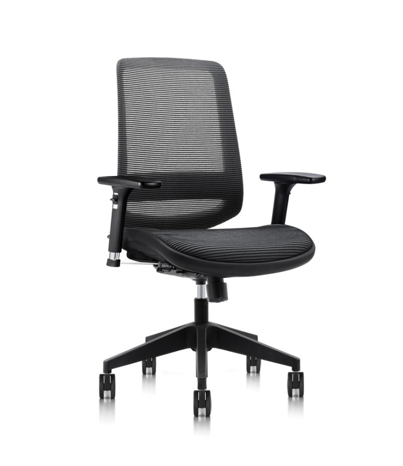 C19 ergonomic chair with mesh seat