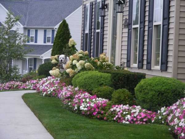 31 Front Yard Landscaping Ideas On A Budget