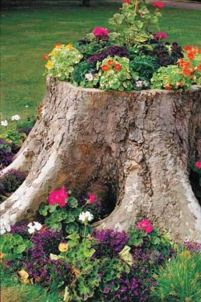 Front Yard Landscaping Ideas: Tree Stump Planter