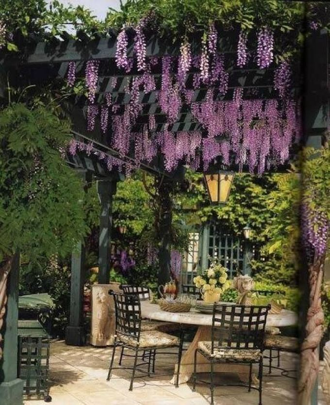 Backyard Landscaping Ideas - Cultured Pergolas - harpmagazine.com
