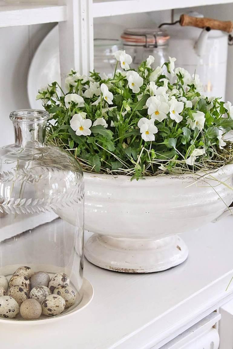 French Country Decor Ideas - White Violas Planted in Antique Ceramic Dish - Harpmagazine.com