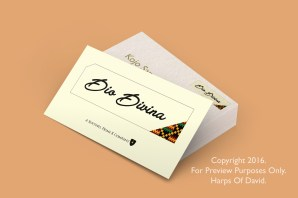 Business Card mock up design for Dio Divina, a fashion brand.