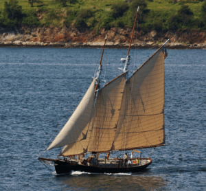 Alert Sailing Charters
