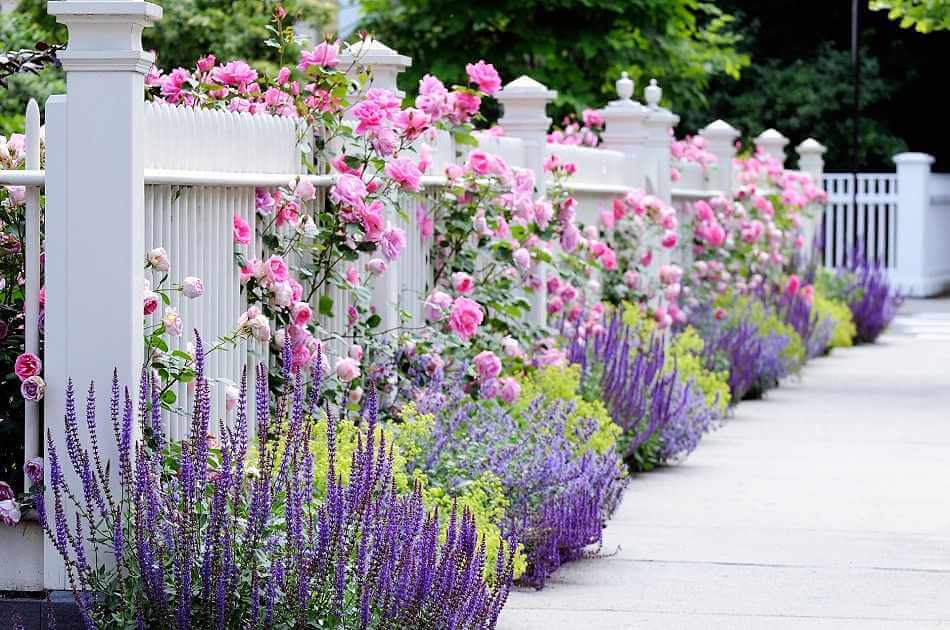13. Romantic Fences Front Yard Landscaping Ideas
