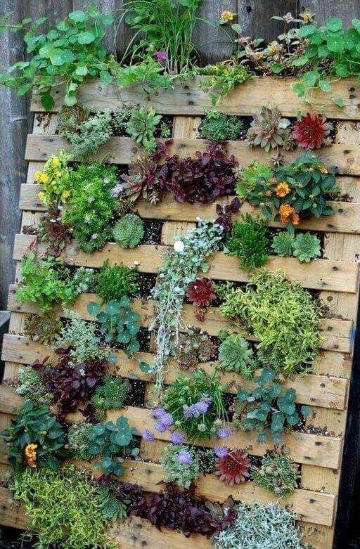 Nice Ideas to Grow Plants Vertically on Front Yards - Harptimes.com