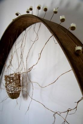 Rhizosphere detail (8)
