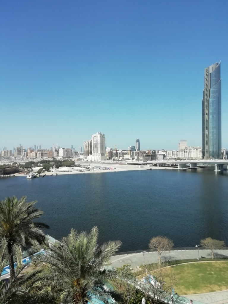 5 View from our Dubai hotel window