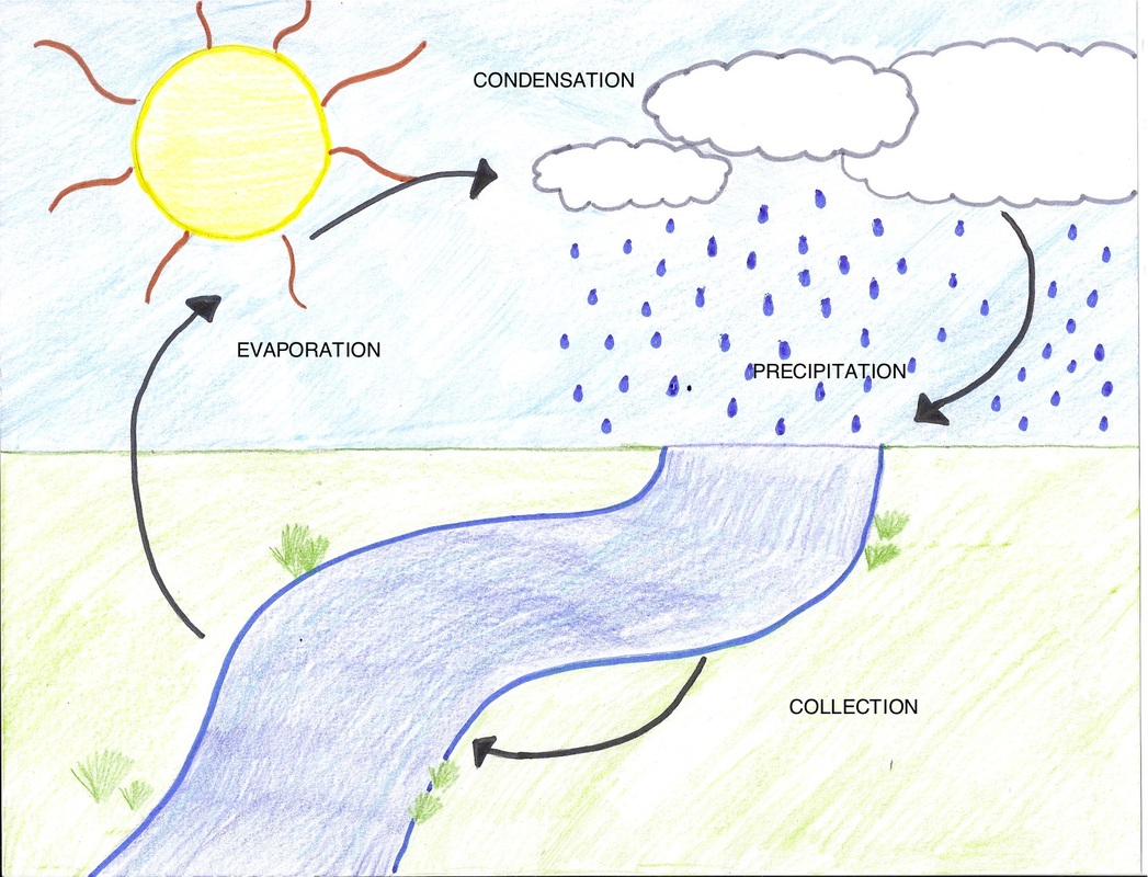 Water Cycle The Process