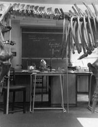 EGS Zoology Laboratory -2