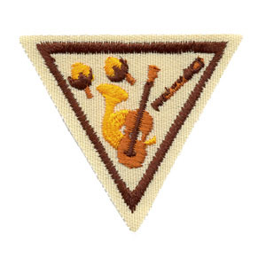 Sounds of Music Try It Girl Scout Badge at Harris Academy of the Arts