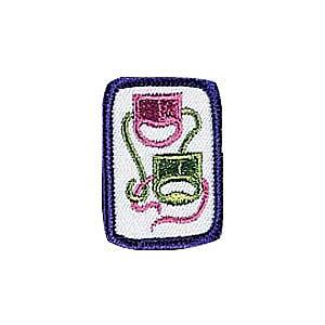 The Play's The Thing Girl Scout Badge at Harris Academy of the Arts