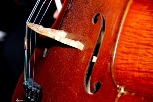 close-up-of-cello