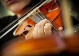Close up of violinist's fingers on strings