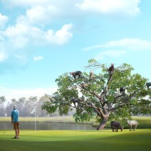 Image showing goats climbing a tree on a golf course to celebrate the start of the New Year 2015
