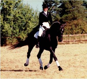 Kathy Riding Trakehner Stallion, Blitzwind.