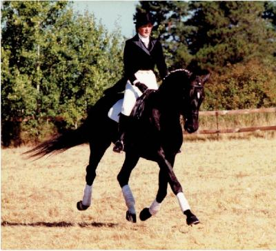 Kathy Riding Trakehner Stallion, Blitzwind.