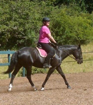 Adult Riding In Our Back In The Saddle Riding Lessons Program