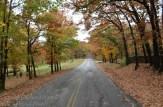 Fall-scene-4