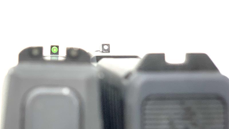 Sig P365 vs Taurus GX4 Sig Sight Picture