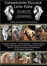 Lion and Tiger park at Chameleon Village