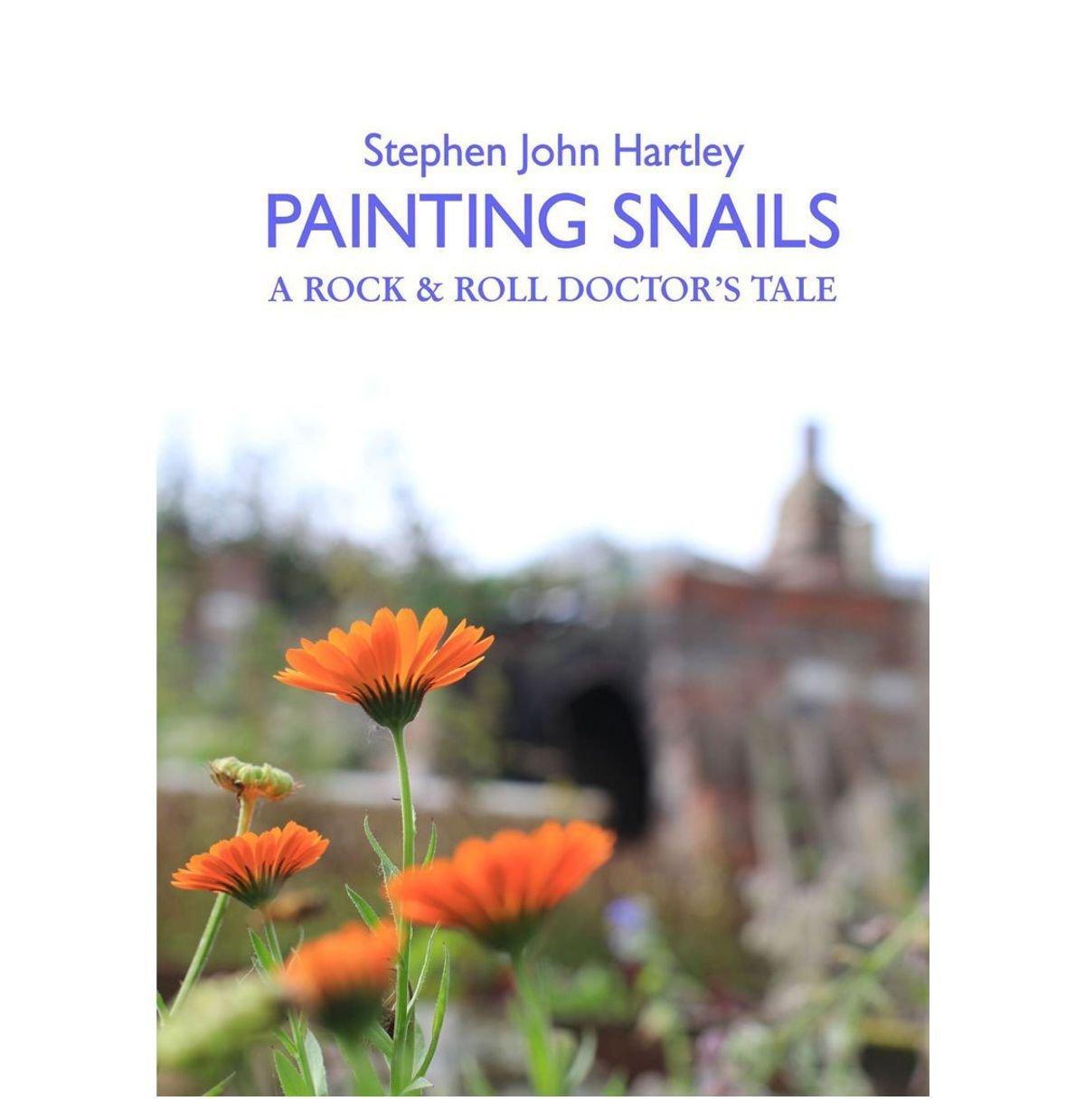PAINTING SNAILS - front cover
