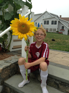 Jack's Sunflowers