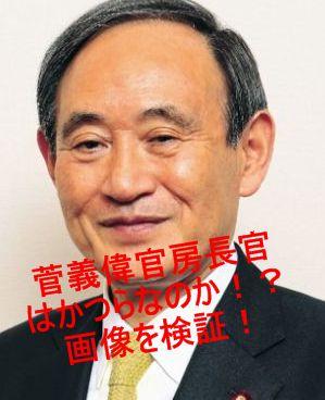菅官房長官 かつら