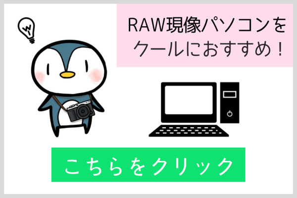 RAW現像 パソコン おすすめ