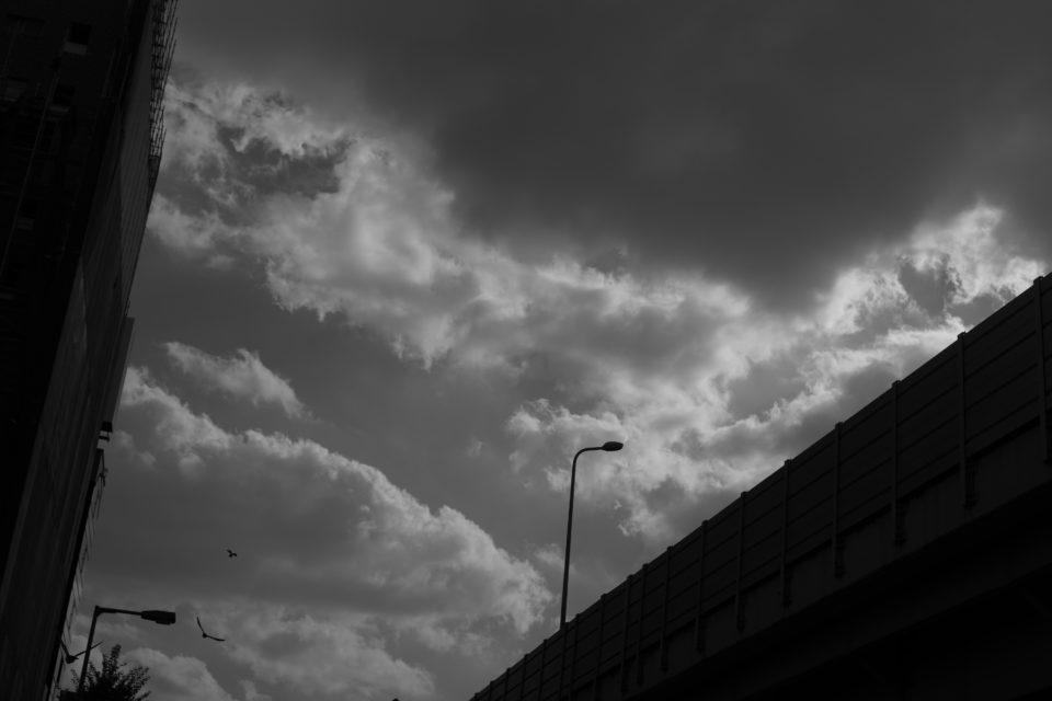 Leica SUMMILUX 50mm F1.4,写真,ブログ,作例
