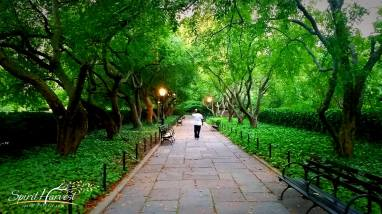 "Photo Challenge Week 34: Bench ""Twilight in the park"""