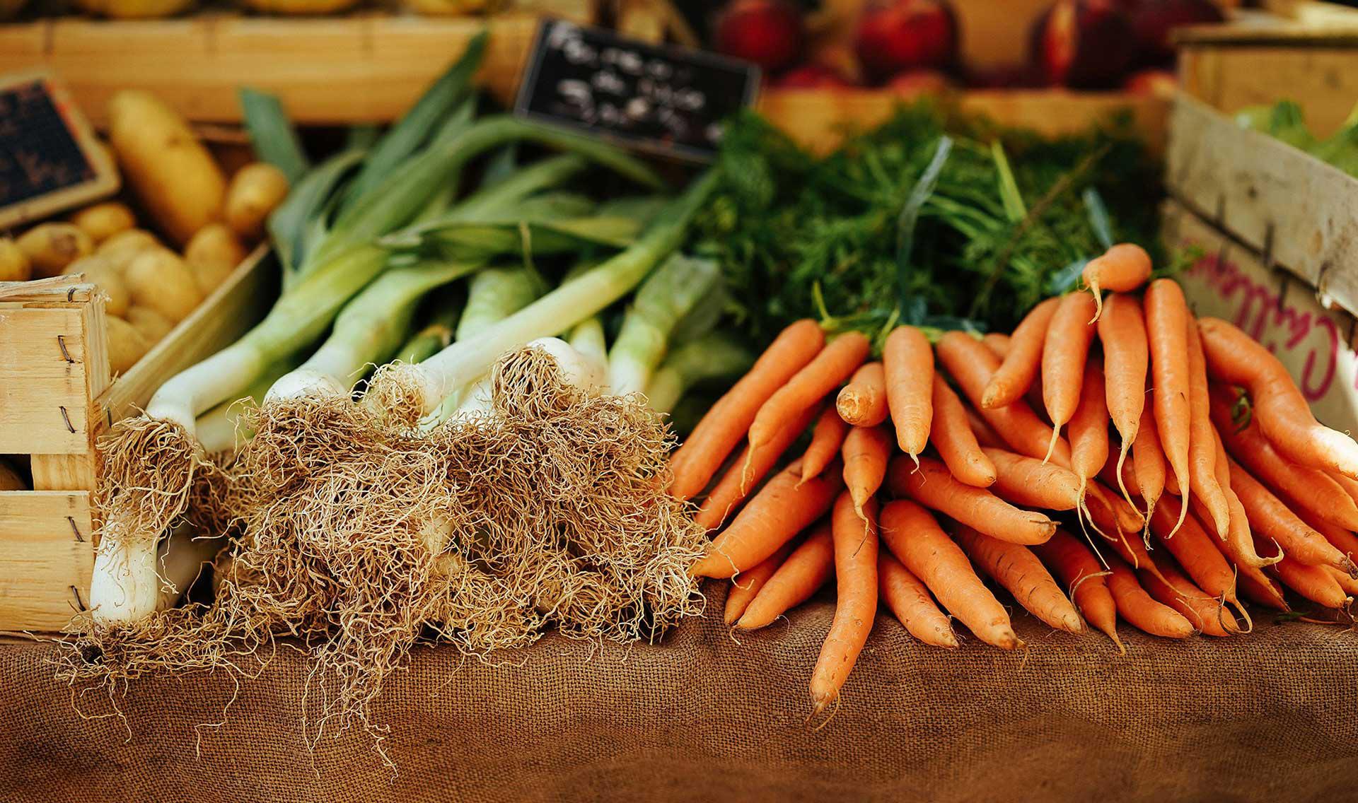 Carrots Farm