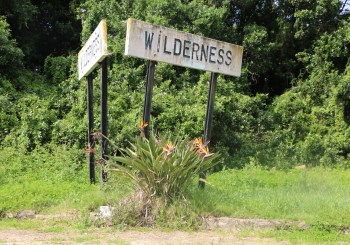 A Wild Weekend in Wilderness