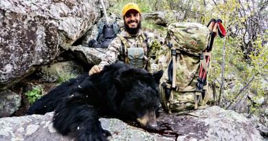 BBQ Bear