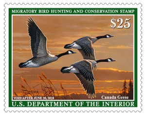 2017-2018 Federal Duck Stamp