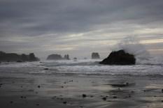 Oregon's South Coast, where I lived a few years.