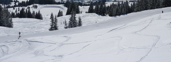 Skifahren in Altenau im Harz