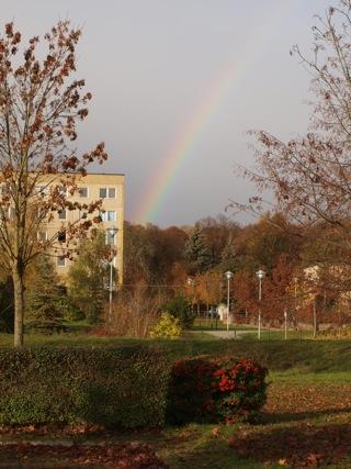 Bild: Im Neubaugebiet an der Magdeburger Straße in der Lutherstadt Eisleben.