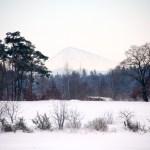 Bild: Winter 2010/2011 - Mansfelder Pyramide - die Halde des Thälmannschachtes.