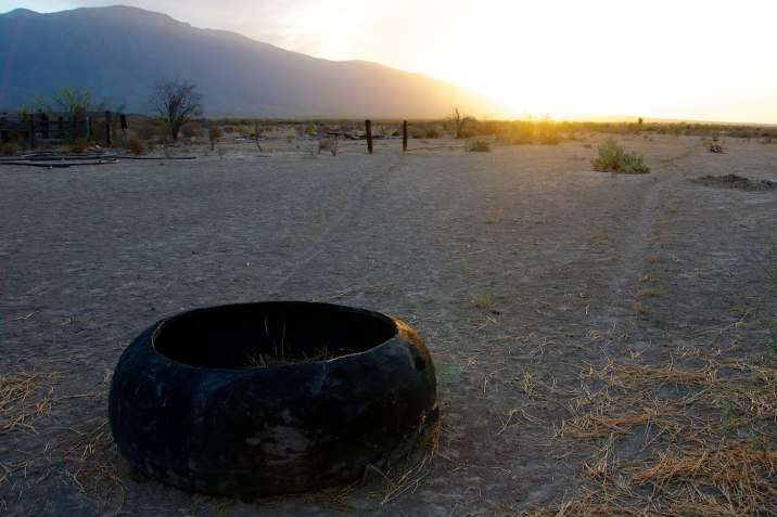 Whatever the animal is that eats from this tire, it has an awesome view.
