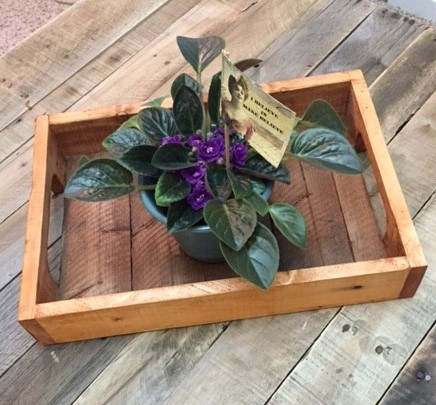 Pallet Tray With Plant Side