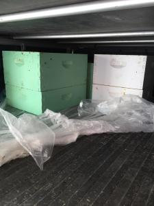 Honey Boxes in Truck