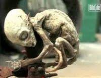 پوست خشكیده تن این موجود از او یك مومیایی واقعی ساخته www.hashem.mihanblog.com