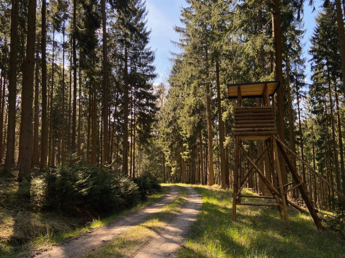 Wanderung Odenwald Bullau - Ebersberg