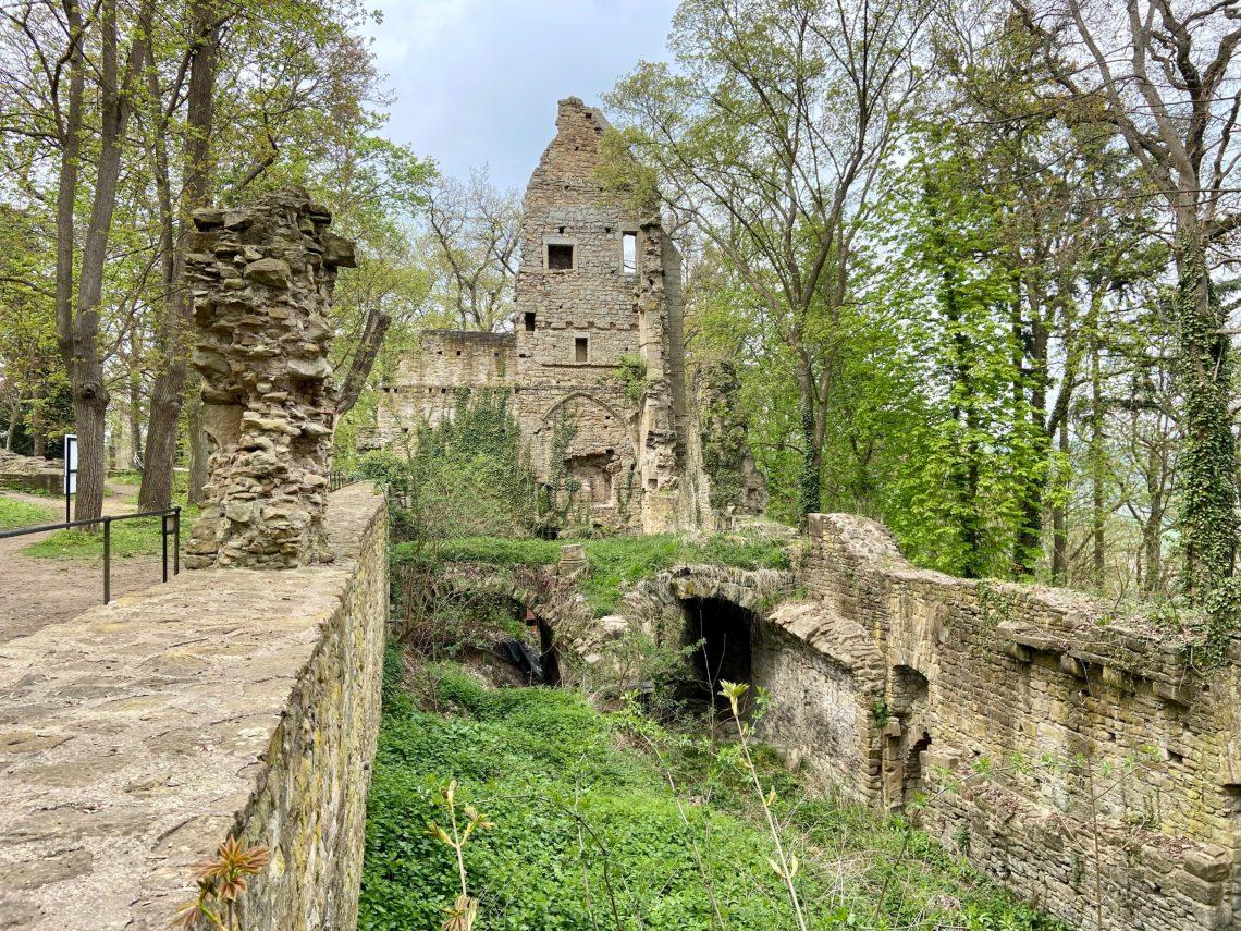 Bad Sobernheim - Kloster Disibodenberg