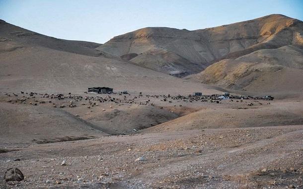 تنفيذ مشاريع ريادية في البادية الأردنية
