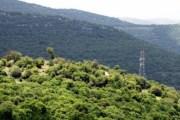 طائرة بدون طيار تكشف 15 اعتداء على البيئة في عجلون