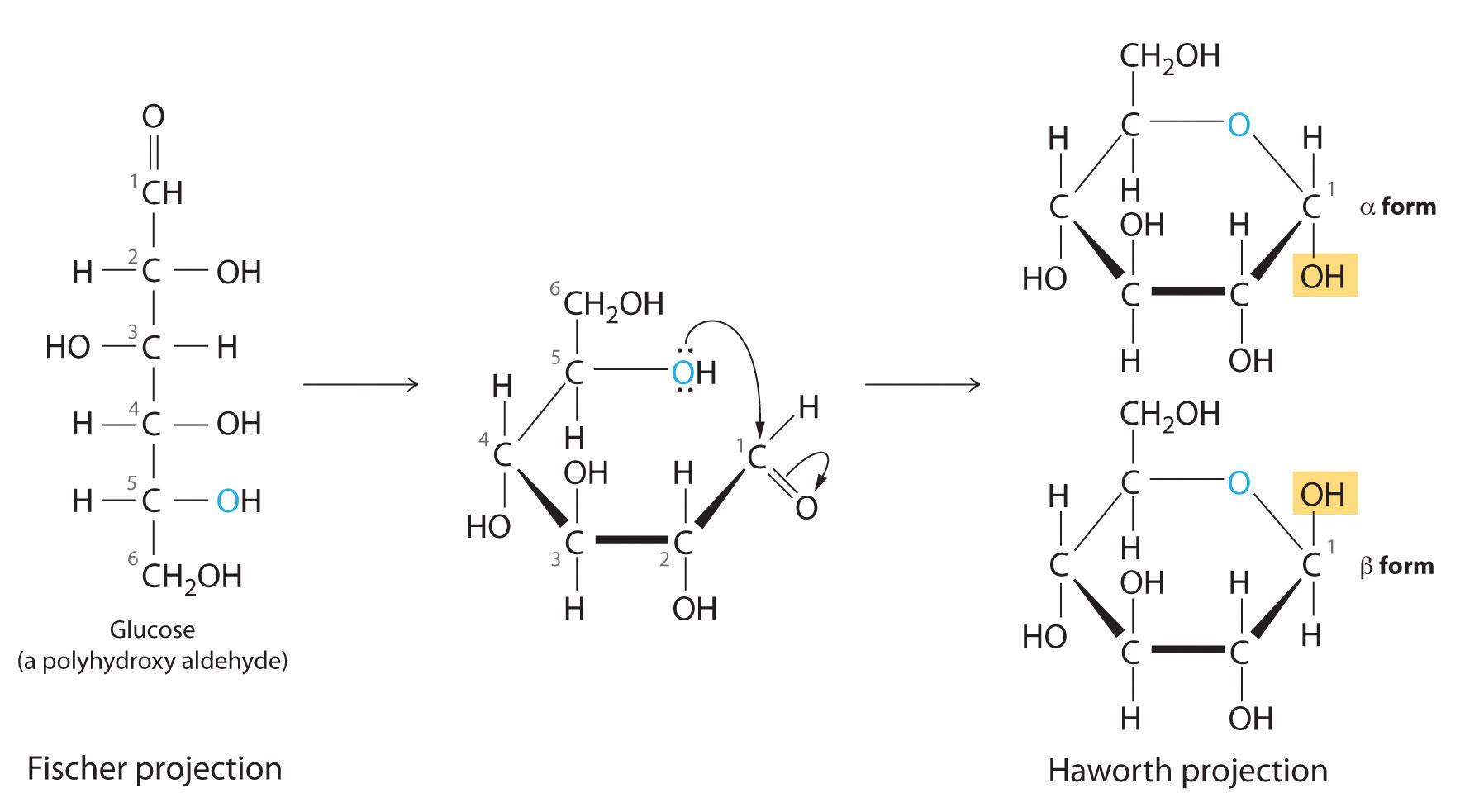 Hemiketal Biochembloggang