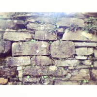 Walls of the 200 year old stone house that will be repaired